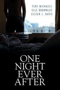 Book Cover: One Night Ever After